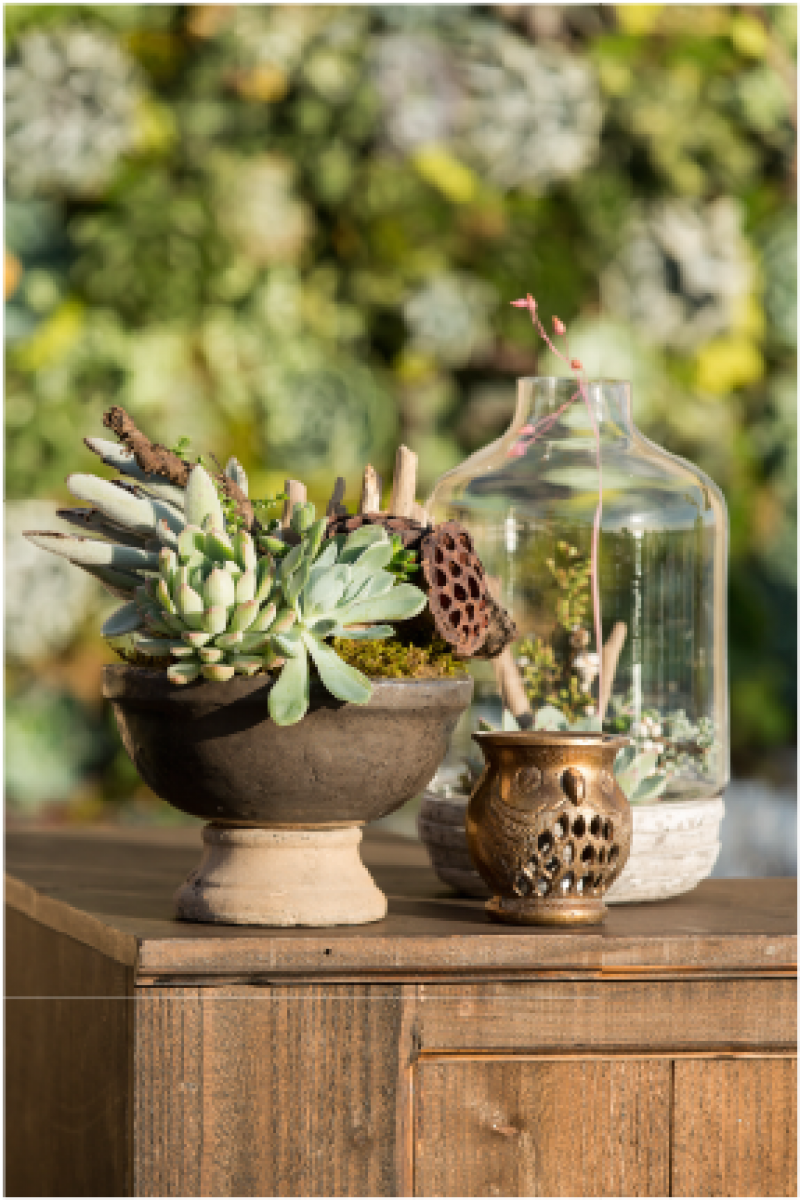Event Floral Design Footed Terrarium