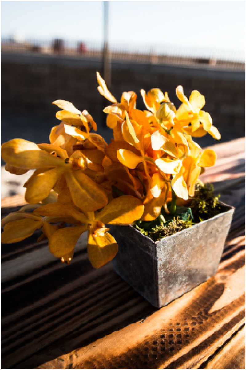 Event Floral Design Orange Orchids