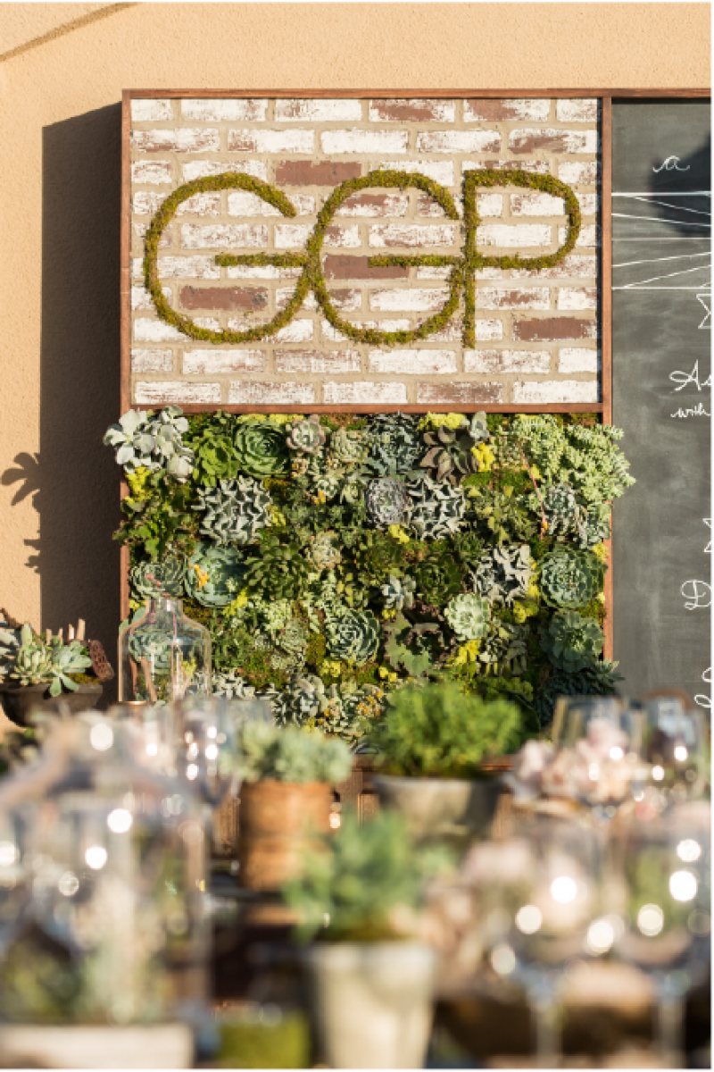 Event Floral Design Succulent Wall