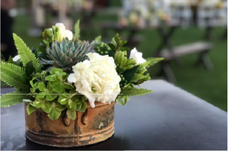 Event Floral Design Succulents And White Roses
